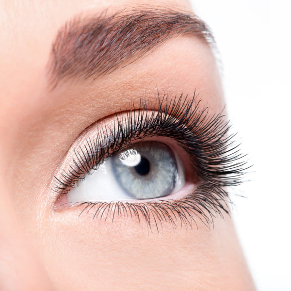 Get Your Eyebrows In Shape Avalanche Salon Spa